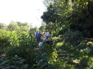 Volunteers hard at work in the Strathcona Community Garden.